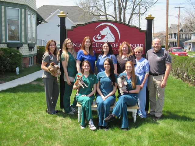 Our Milford Veterinary Team